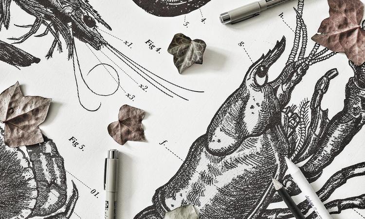 Fruits De Mer från Atelier Graphique har inspirerats av den svenska västkusten