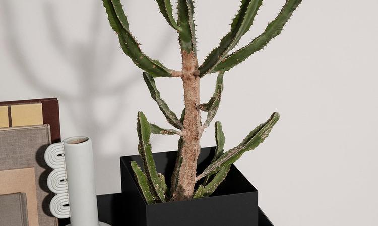 Ferm Living Plant Box Pot svart till växtlåda