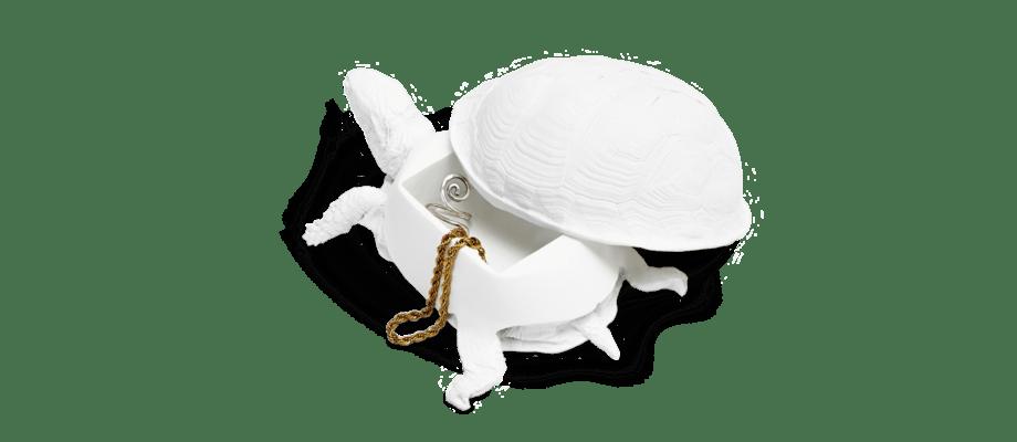 Den smarta asken Reality Turtle Box från Areaware finns att köpa på Olsson & Gerthel