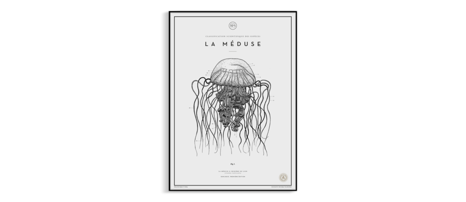 Atelier Graphique La Méduse No. 5 Poster på Munken Pure Rough 170g
