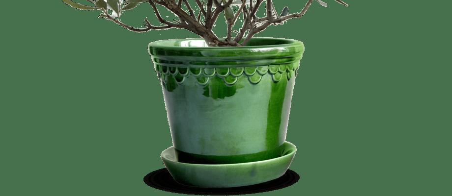 Bergs Potter Københavner Kruka med fat i grön glasyr